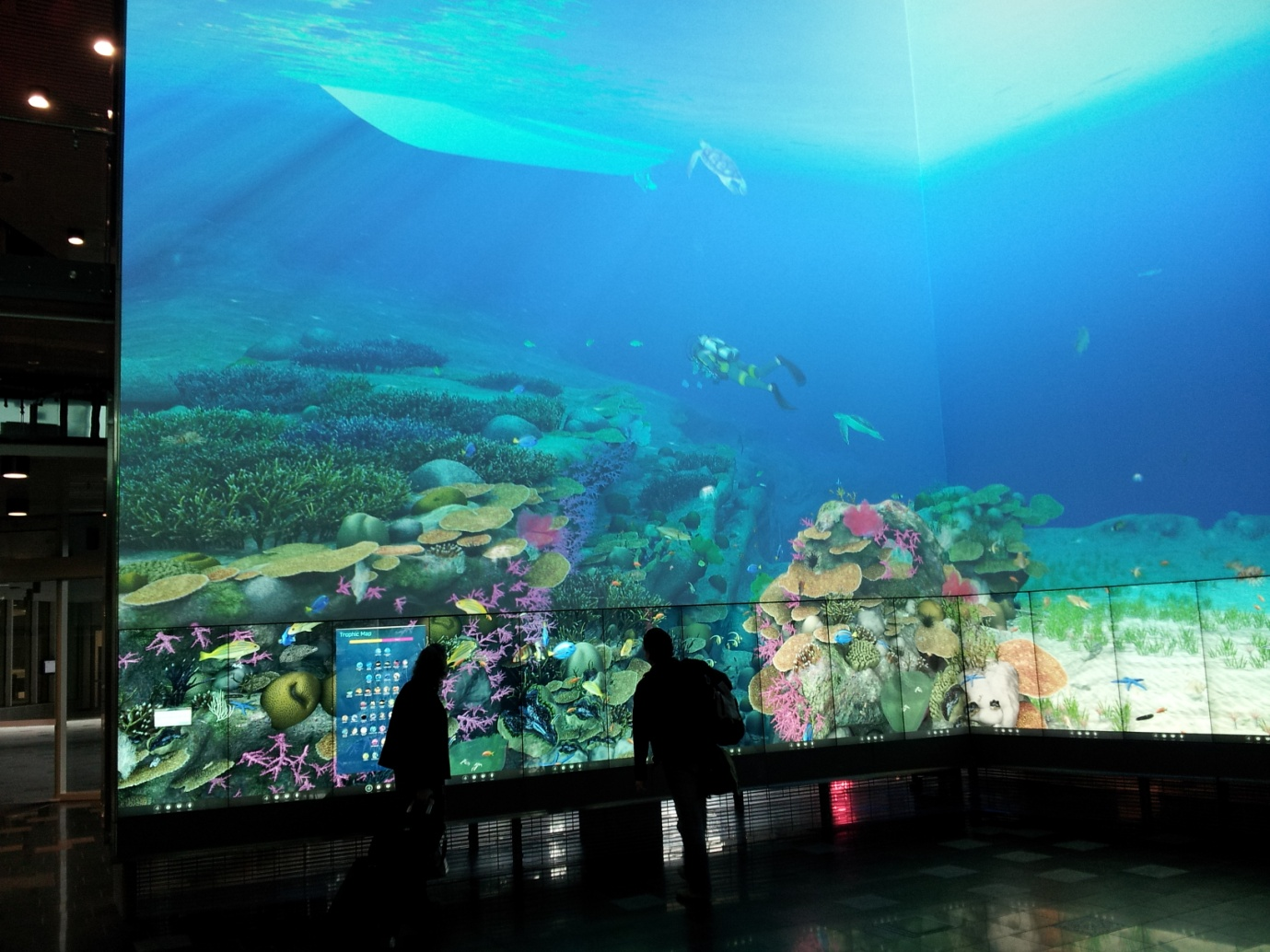 Helen and Andrew exploring virtual Great Barrier Reef in the Cube